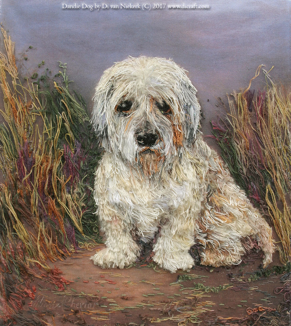 DANDIE DOG