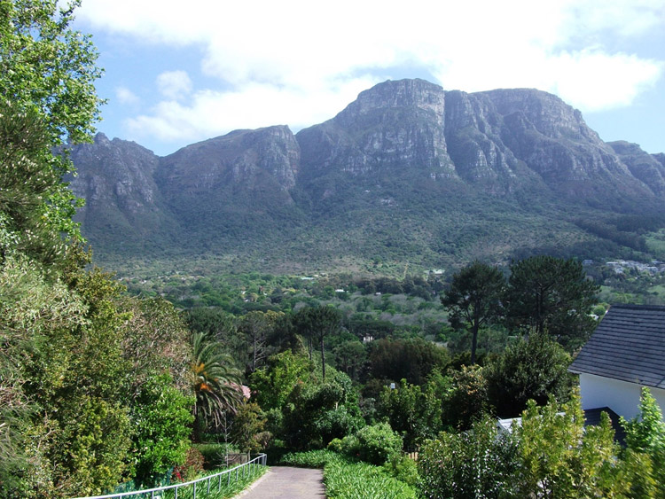 Newlands Cape Town - where we live and create