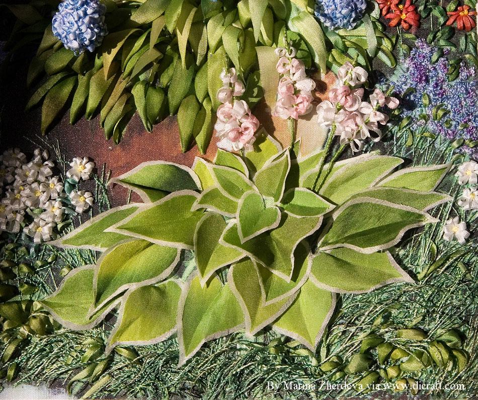 12 Hosta shrub