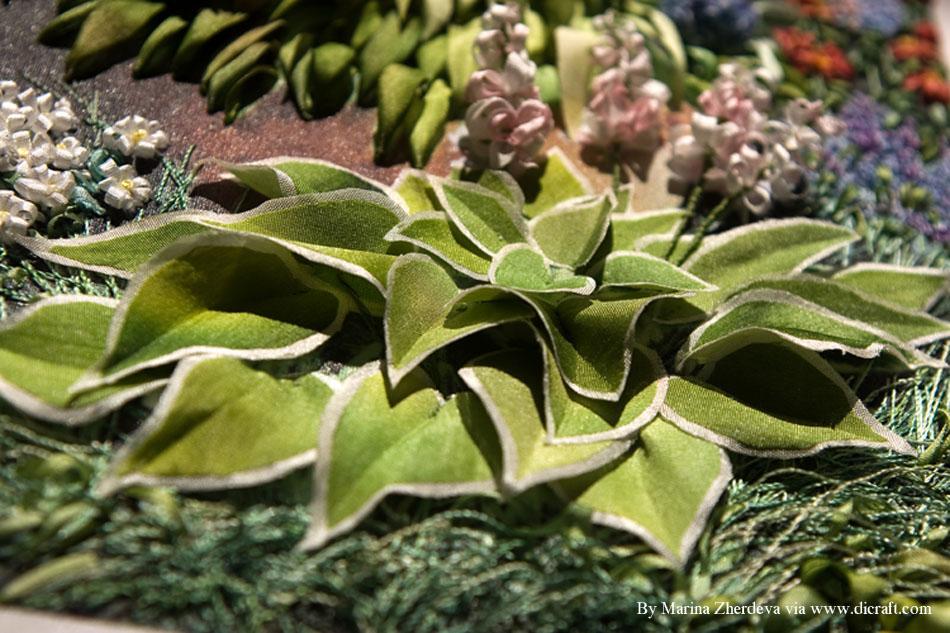 13 Hosta shrub