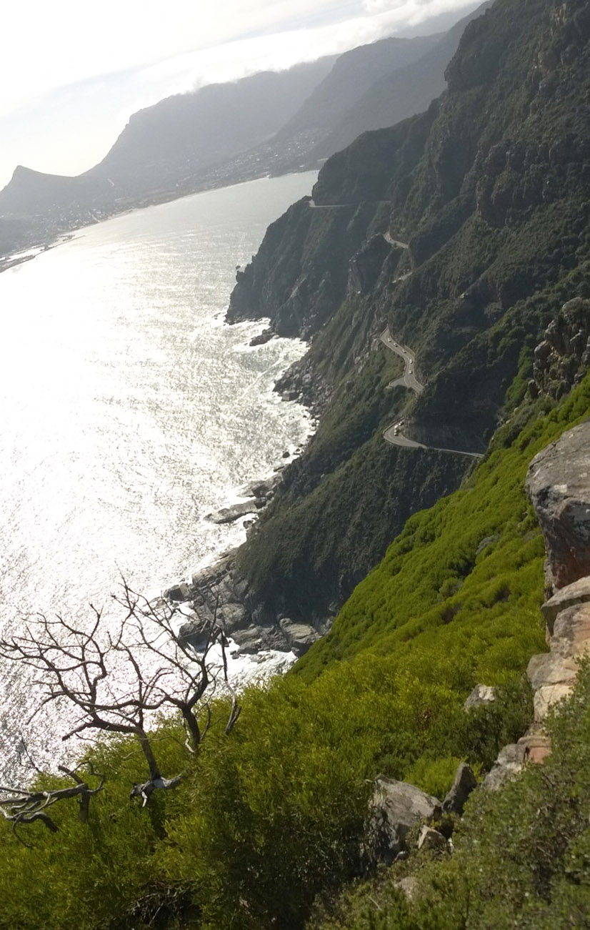 chapman's Peak road