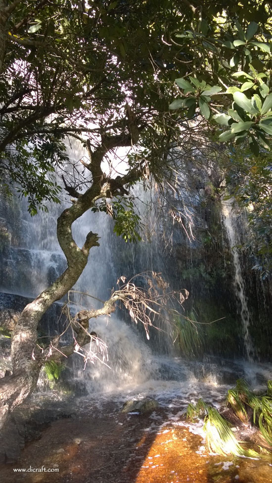 The Waterfall at Silvermine