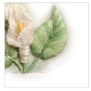 5 The Arum flower