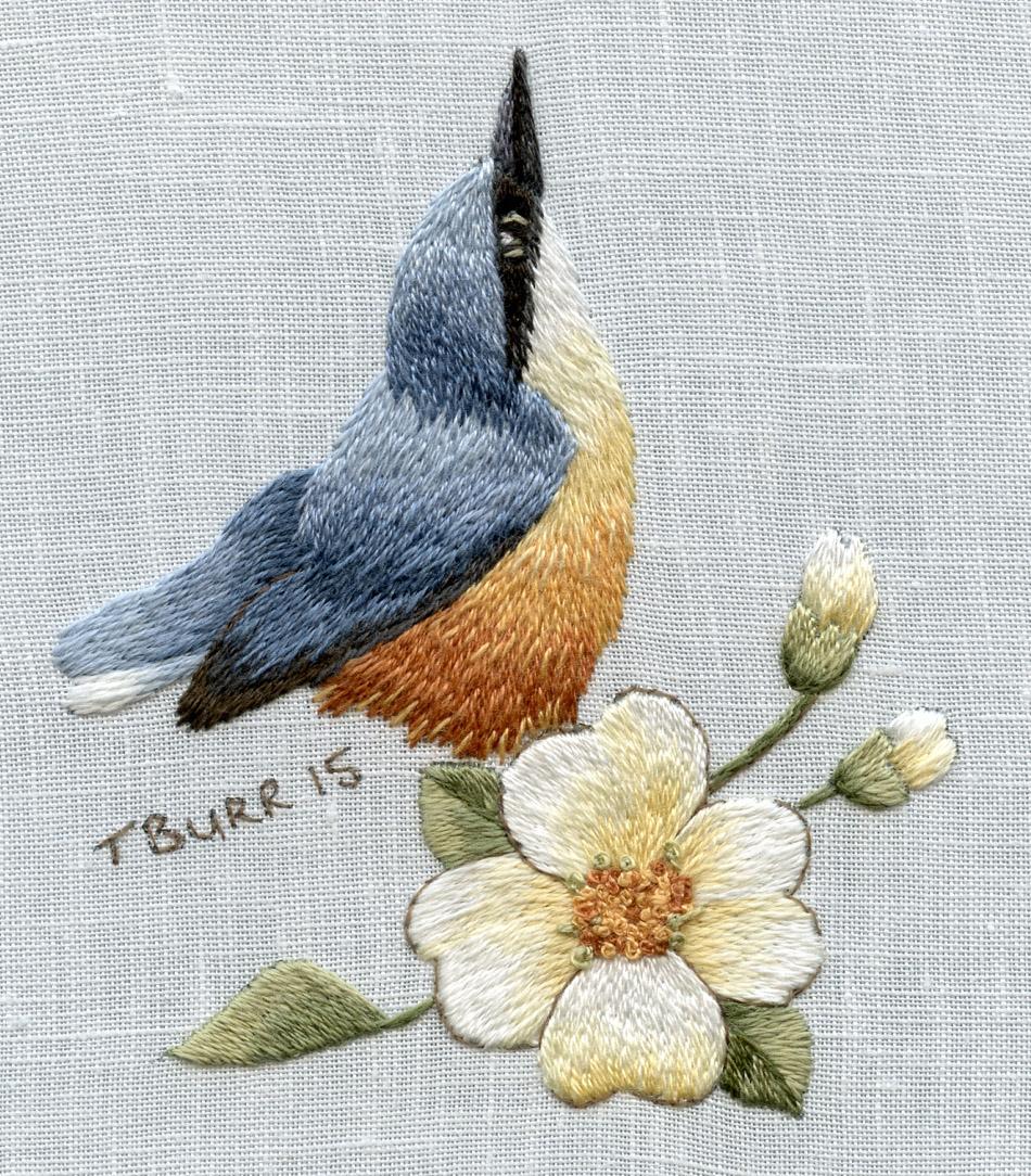 Nuthatch In Spring by Trish Burr