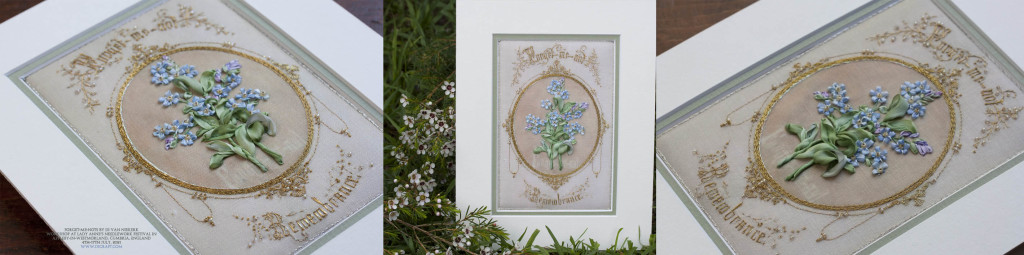 Di-England-Forget-me-not