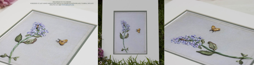Di-England-The-Moth